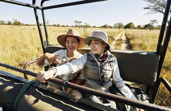 小S、阿雅赞比亚探访小象遇盗猎
